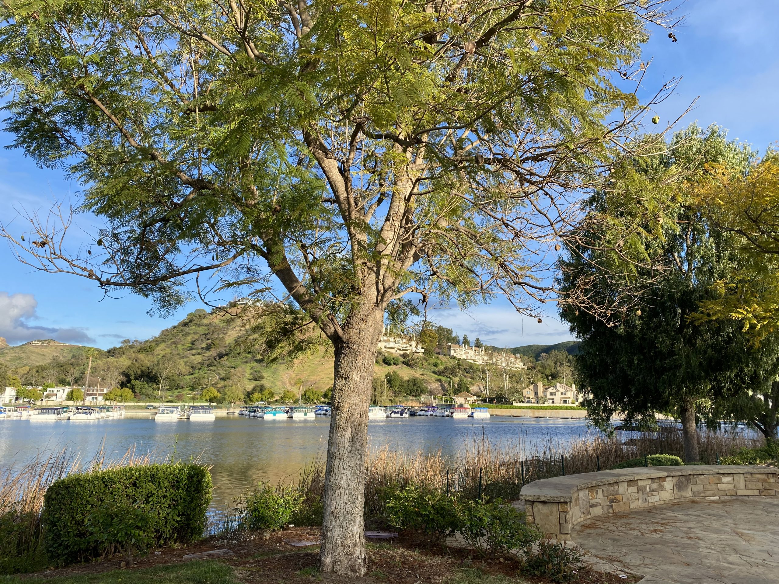 Westlake Village opposite harbor